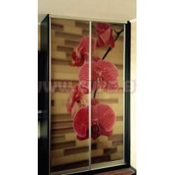 Шкаф купе малиновая орхидея