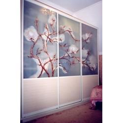 Шкаф Купе с фотопечатью ветка сакуры