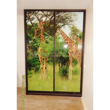 Шкаф купе - Жирафы