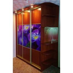Шкаф Купе с фиолетовыми цветами