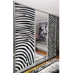 Шкаф-купе фотопечать + зеркало