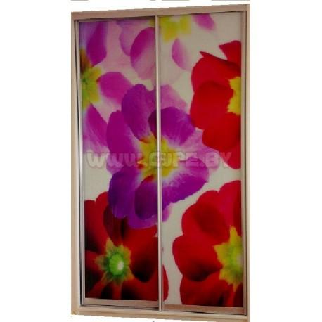 Шкаф-Купе красивые цветы